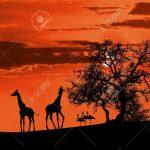 Mythes, contes et légendes : contes africains